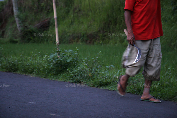 After a hard day in the rice paddy, a man sets out to hunt and kill backpackers in Ubud.