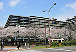 April 6, 2012, Tokyo, Japan - Cherry blossoms are in full bloom at the Foreign Ministry in Tokyo on Friday, April 6, 2012. It's springtime in Tokyo and time to stop and appreciate fragile pale pink blossoms in full bloom all over the nation's capital. Last year, Japan's most popular national passtime was somewhat muted due to the March 11 earthquake and tsunami. But this year, the centuries-old tradition has come back with revelers eager to use the occasion as a way to break from a year marked by the crisis and disaster. (Photo by Natsuki Sakai/AFLO) AYF -mis-