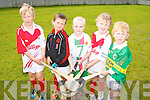 Pictured at the hurling Cul Camp at Na Gaeil GAA Club on Friday were, left to right: Luke Kavangh, Darragh O'Callaghan, Cathal Contagh, Conall Foley and Jack O'Morris.