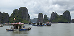 Halong-Vietnam, Ha Long - Viet Nam - 22 July 2005---Floating fisher village in characteristic landscape dominated by limestone rocks and islets at Halong Bay, a UNESCO World Natural Heritage Site---landscape, nature---Photo: Horst Wagner/eup-images