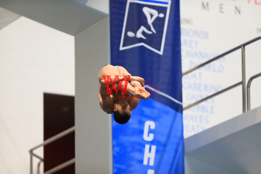The Louisiana State University men's swimming and diving team compete at the 2017 NCAA National Swimming and Diving Championships in Indianapolis, IN. March 24, 2017<br /> (Photo by Walt Middleton Photography 2017)