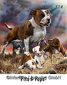 Steven-Michael, REALISTIC ANIMALS, REALISTISCHE TIERE, ANIMALES REALISTICOS, paintings+++++,USMG114,#a#, EVERYDAY
