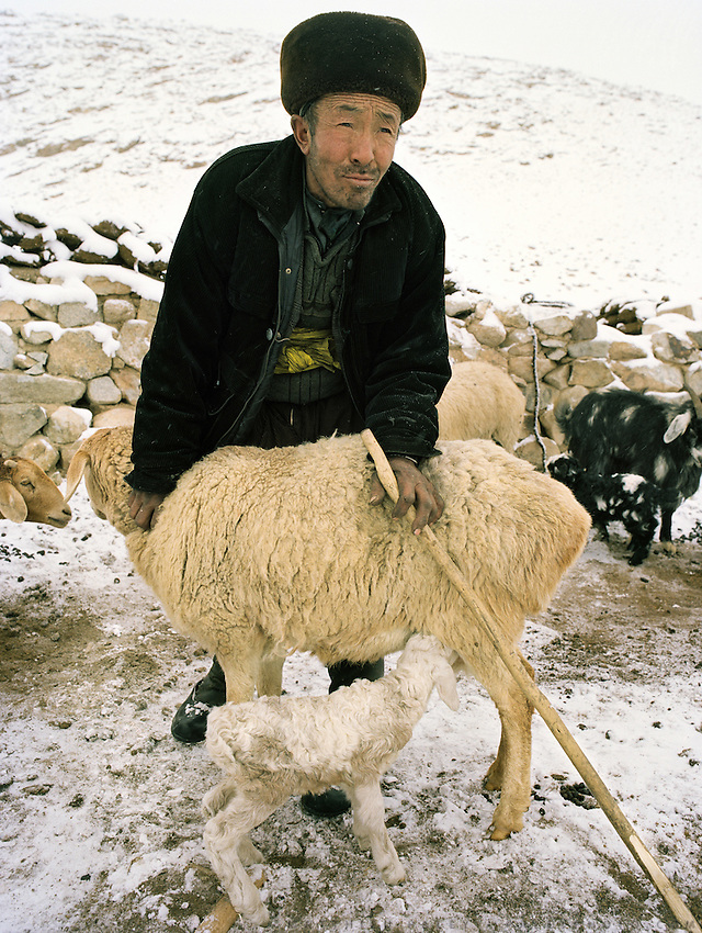 "Er Ali Boi, the richest  ""sane"" man in Pamir. He owns 1000 goats, 300 yaks, 4 horses, 6 camels. Holding a sheep while the lamb is breast feeding..Campment of Esh Keli..Winter expedition through the Wakhan Corridor and into the Afghan Pamir mountains, to document the life of the Afghan Kyrgyz tribe. January/February 2008. Afghanistan"