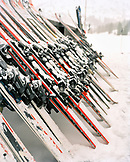 USA, Utah, skis in a row on snow, Alta Ski Resort