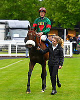 Winner of The First Carlton Novice Auction Stakes Div 2 Grove Ferry ridden by David Probert and trained by Andrew Balding is led into the Winners Enclosure  during Evening Racing at Salisbury Racecourse on 11th June 2019
