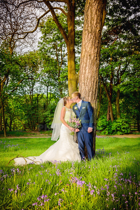 Bride and Groom in Bluebell woods at Knebworth Barns, Hertfordshire