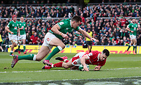 8th February 2020; Aviva Stadium, Dublin, Leinster, Ireland; International Six Nations Rugby, Ireland versus Wales; Tomos Williams (Wales) dives in to score a try