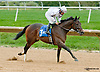 Purple Egg winning The Barbaro Stakes at Delaware Park on 10/9/13