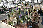 Deep Cut Orchid Society Annual Orchid Show at Dearborn Farms in Holmdel, NJ