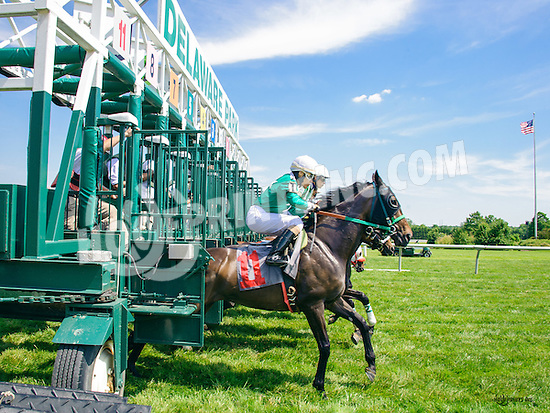 Secret Temple winning at Delaware Park on 6/20/16
