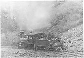 This photo shows D&amp;RG#22 on lease to the Silverton RR.  Otto Mears is standing at center while a large work crew poses with him.  A secton car trailer is attached to the tender.  This is an enlargement of a section of a photo in Ferrell's book that shows SRR #100 on the hill above this scene.<br /> D&amp;RG / Silverton RR  Silverton Railroad, CO  Taken by Carpenter, W. J. - 1889