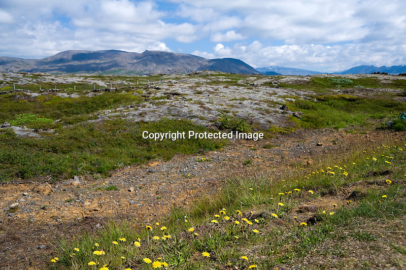 Lava Field and Mountains near Thingvallavatn Lake in South Iceland