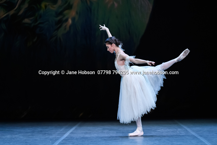 "London, UK. 26.01.2020. Yasmine Naghdi rehearses for ""Giselle"" in the Ballet Icons Gala 2020, at the London Coliseum. Photograph © Jane Hobson."