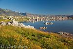 Tufa formations on the shore of Mono Lake, California, USA