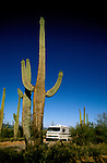 RV life: RV life at Saguaro National Monument, AZ  .Photo Copyright: Lee Foster, lee@fostertravel.com, www.fostertravel.com,  (510) 549-2202.Image rvlife205