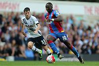 Tottenham Hotspur vs Crystal Palace 20-09-15