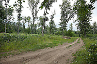 FOREST_LOCATION_90101