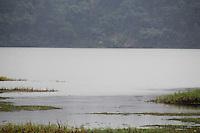SAO PAULO, SP - 10.03.2016 - ABASTECIMENTO-SP - Vista da represa do Guarapiranga na manhã desta quinta-feira (10) na zona sul de São Paulo. Devido às chuvas na região o sistema apresenta 84,4% em sua capacidade de armazenamento. (Foto: Fabricio Bomjardim/Brazil Photo Press)