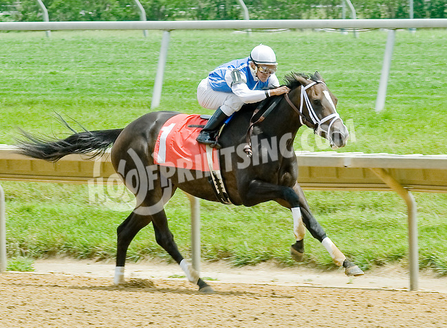 Exhimia winning at Delaware Park on 6/2/12