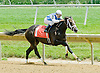 Exhimia winning at Delaware Park on 6/2/12