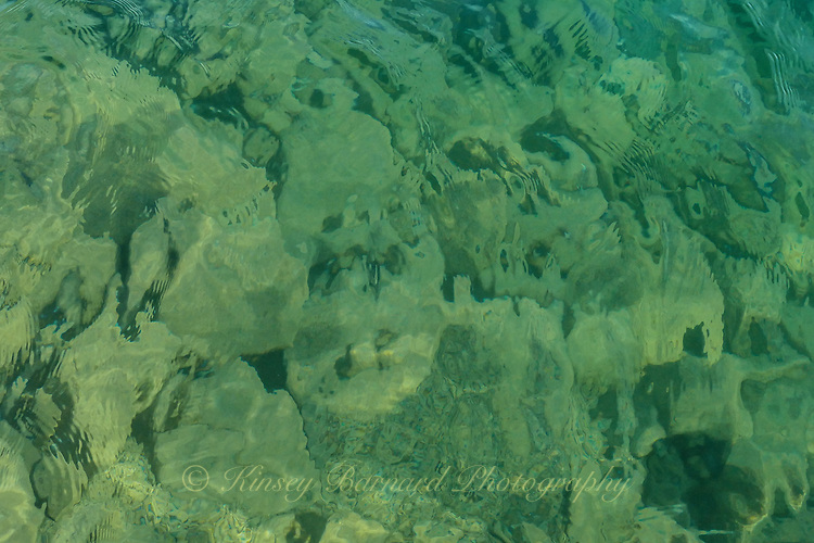 In the emerald waters off the shores of Flathead Lake, in Montana, lurk ghosts longing to tell their tales. What secrets do they hold? I doubt we will ever know.