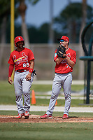 St. Louis Cardinals Jose Godoy (88) and first baseman Zach Kirtley (71) during a Minor League Spring Training Intrasquad game on March 28, 2019 at the Roger Dean Stadium Complex in Jupiter, Florida.  (Mike Janes/Four Seam Images)