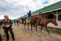 LOUISVILLE, KY - MAY 03: Irish War Cry walks back to the barn at Churchill Downs on May 03, 2017 in Louisville, Kentucky. (Photo by Alex Evers/Eclipse Sportswire/Getty Images)