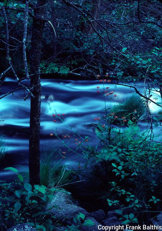 Creek below Burney Falls
