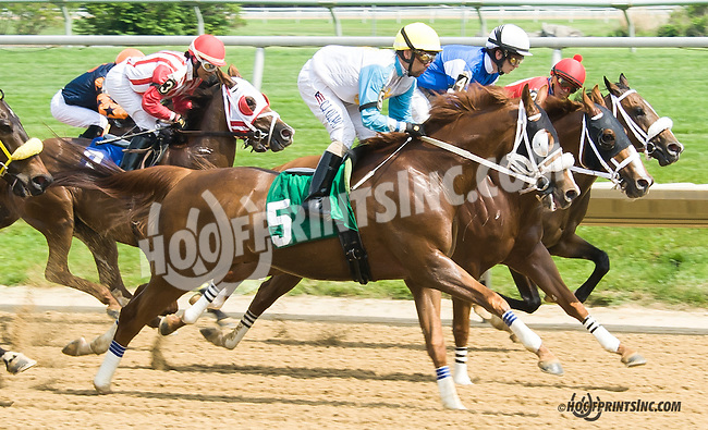 Half Strike winning at Delaware Park on 5/16/15