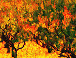 Artistic interpretation of fall in Napa Valley