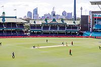 13th March 2020, Sydney Cricket Ground, Sydney, Australia;  General view. International One Day Cricket. Australia versus New Zealand Blackcaps, Chappell–Hadlee Trophy, Game 1.