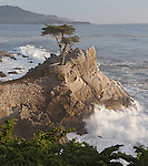 """Cypress Waves""  17 Mile Drive- Pebble Beach, California.  The famous Lone Cypress Tree on the Pacific Ocean with the waves crashing into the coastline. I took this photograph and had to leave to pick some friends up at the airport in San Francisco.  The sunset colors eventually developed into the image titled ""Monet on Monterey"" ..... which I captured by pulling off the highway and racing to the beach just in time .... arghhhhh"