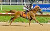 Nouveau Rich winning on 5/23/12