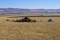 Tunisia.  Bedouin Tent near Le Kef.