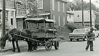 1966 October 17..Historical...Vegetable Cart on Cedar Street off Wilson Road..Sam McKay.NEG# SLM66-8-7.NRHA# 4192..