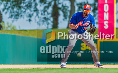 5 March 2015: New York Mets outfielder Alex Castellanos takes infield grounders prior to a Spring Training game against the Washington Nationals at Space Coast Stadium in Viera, Florida. The Mets fell to the Nationals after a late inning rally, dropping a 5-4 Grapefruit League game. Mandatory Credit: Ed Wolfstein Photo *** RAW (NEF) Image File Available ***