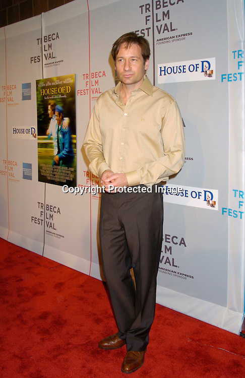 "David Duchovny ..at the ""House of D"" movie screening at the Tribeca Film Festival on May 7, 2004 in New YOrk City. ..Photo by Robin Platzer, Twin Images"