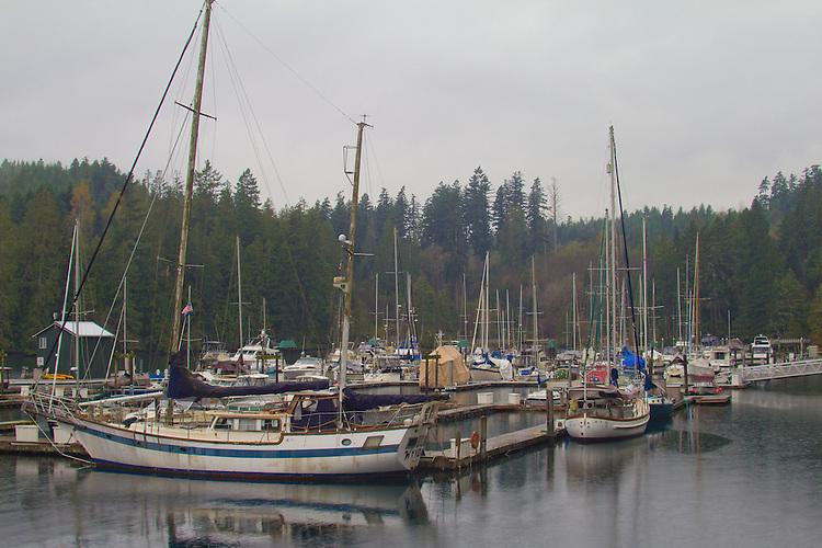 Puget Sound, Hood Canal, Brinnon, Pleasant Harbor, marina, rain, winter, Washington State, Pacific Northwest, USA,