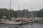 Puget Sound, Hood Canal, Brinnon, Pleasant Harbor, marina, rain, winter, Washington State, Pacific Northwest, USA,