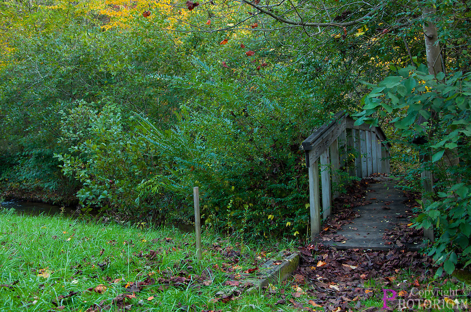 Twin Falls has been honoured with an Arch beam footbrige to see it's beauty over a creek. A pathway to the back woods.