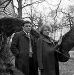 Вечерний вариант (1980)