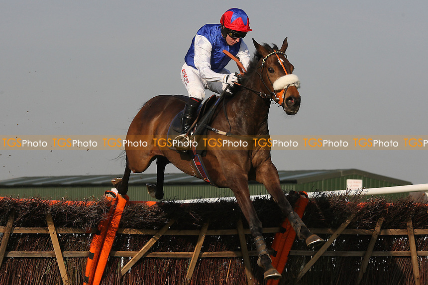 Race winner Flite ridden by Noel Fehily jumps the last in the Follow Plumpton Racecourse On Facebook Mares Handicap Hurdle - Horse Racing at Plumpton Racecourse, East Sussex - 12/03/12 - MANDATORY CREDIT: Gavin Ellis/TGSPHOTO - Self billing applies where appropriate - 0845 094 6026 - contact@tgsphoto.co.uk - NO UNPAID USE.