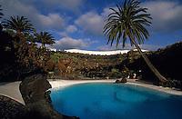 Europe/Espagne/Canaries/Lanzarote/Jameos del Agua : Le jardin et la piscine par l'architecte César Manrique