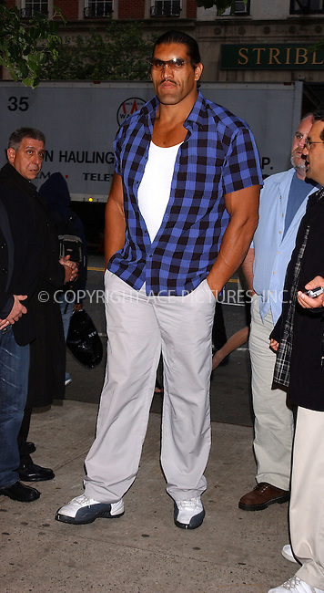 WWW.ACEPIXS.COM . . . . . ....NEW YORK, MAY 24, 2005....Dalip Singh at The Longest Yard screening held at Clearview's Chelsea West Cinemas.....Please byline: KRISTIN CALLAHAN - ACE PICTURES.. . . . . . ..Ace Pictures, Inc:  ..Craig Ashby (212) 243-8787..e-mail: picturedesk@acepixs.com..web: http://www.acepixs.com