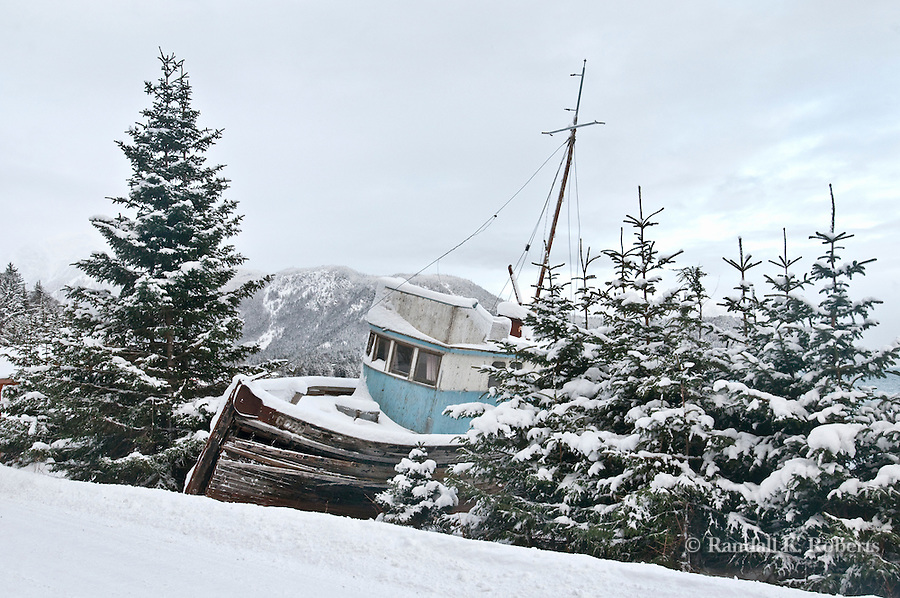 Old marooned ship among trees, Haines, Alaska, wintertime.
