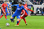 30.11.2019, PreZero-Arena, Sinsheim, GER, 1. FBL, TSG 1899 Hoffenheim vs. Fortuna Duesseldorf, <br /> <br /> DFL REGULATIONS PROHIBIT ANY USE OF PHOTOGRAPHS AS IMAGE SEQUENCES AND/OR QUASI-VIDEO.<br /> <br /> im Bild: Sebastian Rudy (TSG 1899 Hoffenheim #16) gegen Markus Suttner (Fortuna Duesseldorf #29)<br /> <br /> Foto © nordphoto / Fabisch