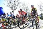 The peloton climb Paddestraat during the 2019 E3 Harelbeke Binck Bank Classic 2019 running 203.9km from Harelbeke to Harelbeke, Belgium. 29th March 2019.<br /> Picture: Eoin Clarke | Cyclefile<br /> <br /> All photos usage must carry mandatory copyright credit (© Cyclefile | Eoin Clarke)