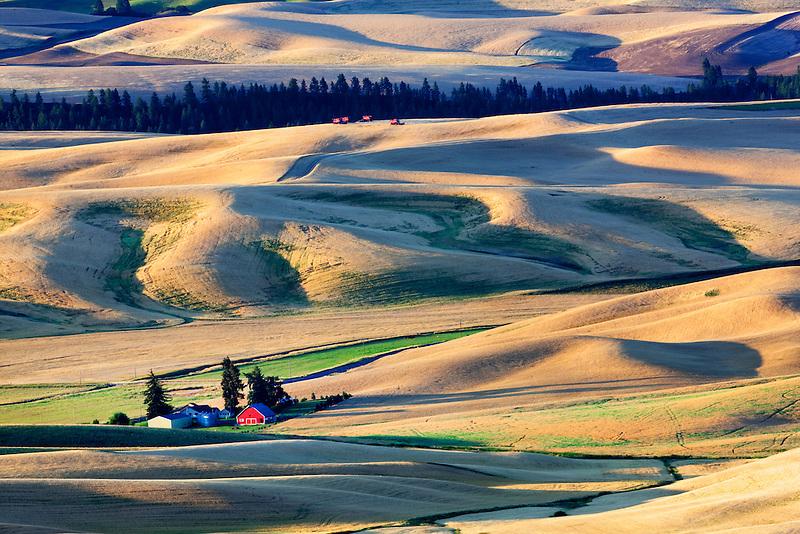 Barn and wheat fields as seen from Steptoe Butte, Washington.