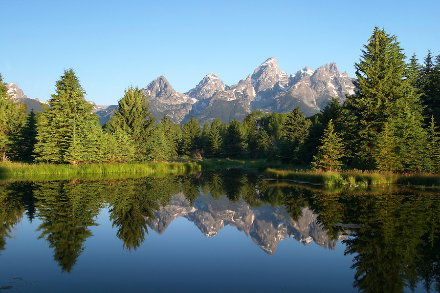Teton Mountains reflected in backwaters of the Snake River at sunrise, Schwabacher Landing, Grand Teton National Park, Teton County, Wyoming, USA
