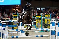 ZUIDBROEK - Paardensport, ICCH Zuidbroek, springen internationaal Grote Prijs , 05-01-2019, Sabrina van Rijswijk met Everest-W
